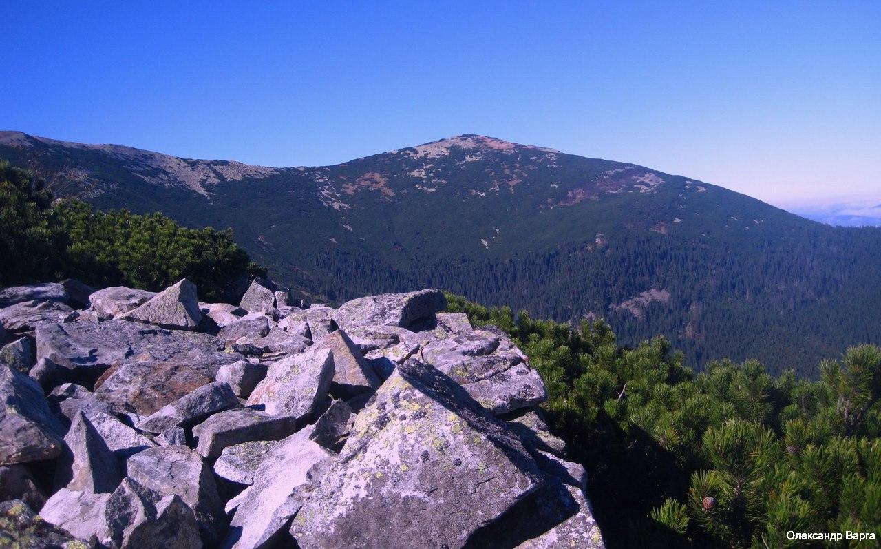 Горгани гора Висока